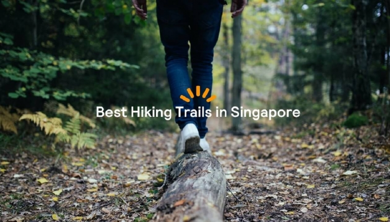 Skyscanner Best Hike FB